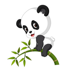 Cute funny baby panda hanging on the bamboo vector