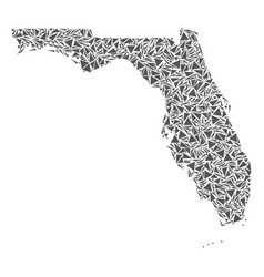 florida map of triangles vector image