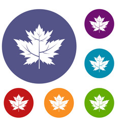 Gooseberry leaf icons set vector