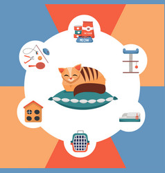 round colorful infographics pet care accessories vector image