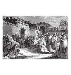 Triumphal entry jesus into jerusalem vector