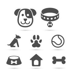 Cute dog icon symbol set on white vector image