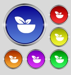 Organic food icon sign Round symbol on bright vector image