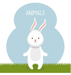 Cute rabbit in the field landscape character vector