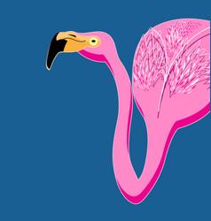 portrait pink flamingos vector image