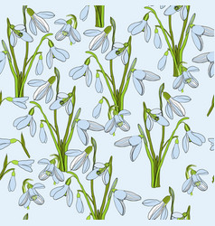seamless pattern first snowdrops vector image