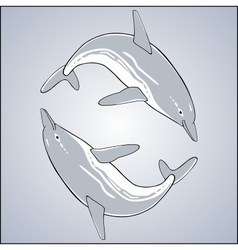 Cute jumping dolphins vector image vector image