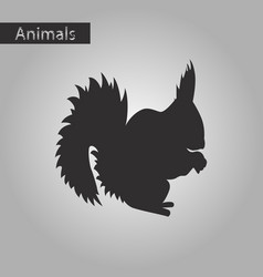 black and white style icon of squirrel vector image