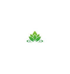 lotus green leaf nature logo vector image