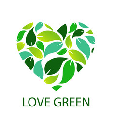 love green with green leaves forming heart vector image
