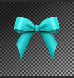 Realistic shiny aqua satin bow isolated vector