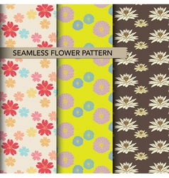 seamless colorful flower pattern set vector image