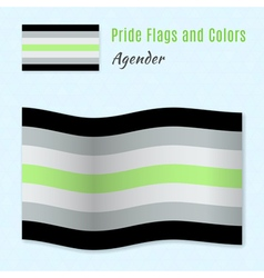 Agender pride flag with correct color scheme both vector image