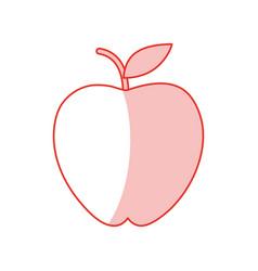 apple fruit sweet shadow vector image