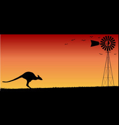 australian sunset vector image
