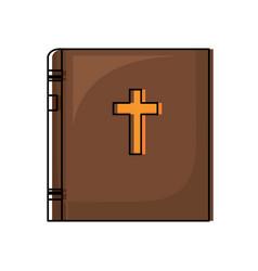 bible icon image vector image