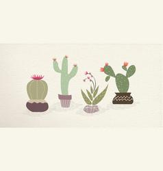 cactus mexican art plant decoration set vector image
