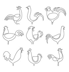 continuous line chicken set vector image