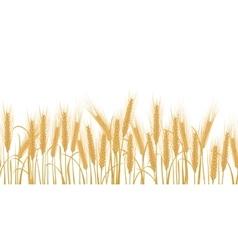 Ears of wheat horizontal border seamless pattern vector