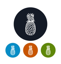 Icon pineapple in the contours vector