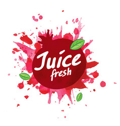 logo pomegranate juice splash on white vector image