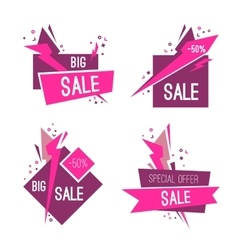 Set of big special sale banners vector image