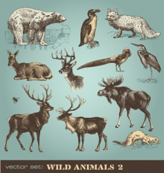 wild animals set 2 vector image vector image