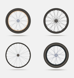 Bicycle wheels and tires vector