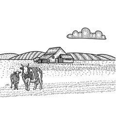 cow and calf grazing on meadow farm barn vector image