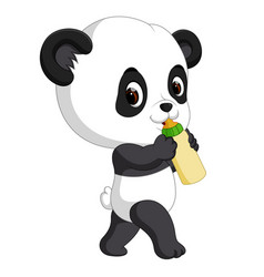 Cute baby panda holding bottle vector
