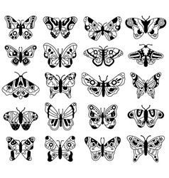 doodle butterfly sketch flying butterflies hand vector image