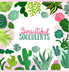 Succulents frame vector