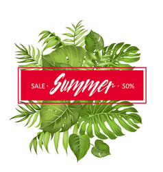 summer sale card vector image