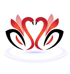 Swans in love logo vector