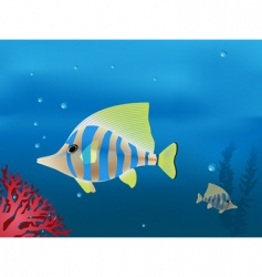 tropical fishes vector image