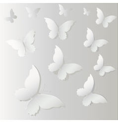 White Lace butterfly on gray background vector