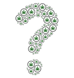 Answer composition of cannabis icons vector