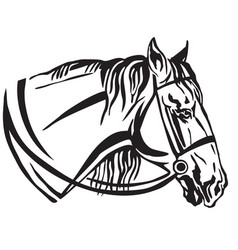 decorative portrait of horse in profile with vector image