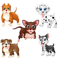 dog cartoon set collection vector image