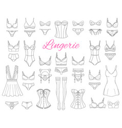 Fashionable female lingerie collection vector