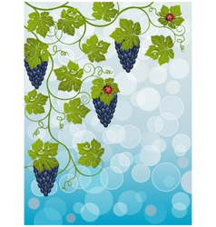 floral background with vine vector image