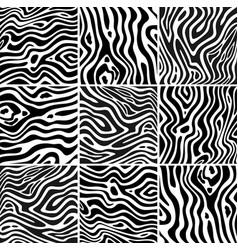 Set zebra pattern vector