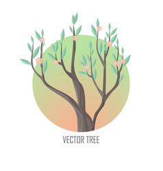 tree with green leaves and pink flowers vector image vector image