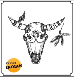 Buffalo skull with feathers for shamans witchcraft vector image
