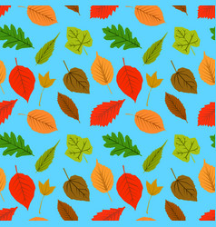 a seamless pattern of leaves and on a blue vector image
