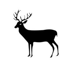 Contour reindeer animal to merry christmas vector