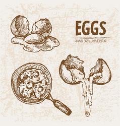 digital detailed line art cooking eggs vector image