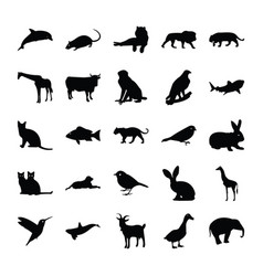 Glyph icons animals vector