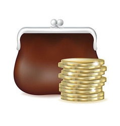 Purse And Money vector image