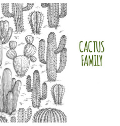 sketched cactuses banner template with text vector image